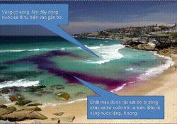 Tại sao tắm biển dễ chết