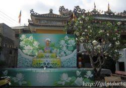 Diệu Giác vào mùa Phật Đản