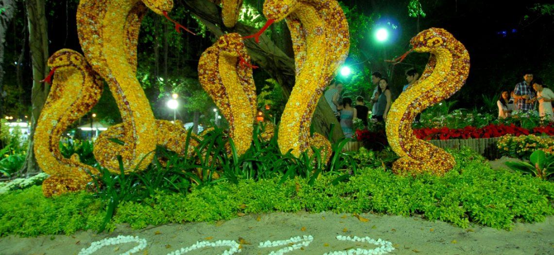 Chùm ảnh: Khai hội hoa xuân TP.HCM Tết Quý Tỵ 2013