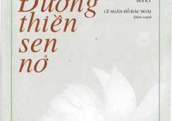 [Giới thiệu sách] Đường thiền sen nở – Sư bà Thích Nữ Diệu Không