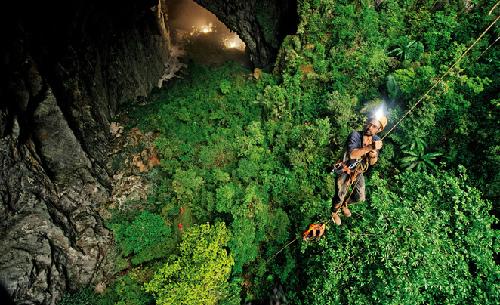 Một phần nóc hang bị sập từ cách đây vài thế kỷ. Nhờ đó, nước mưa và ánh sáng mặt trời có thể lọt vào đây, tạo điều kiện thuận lợi cho cây cối phát triển trong lòng hang. Ảnh: Huffington Post.